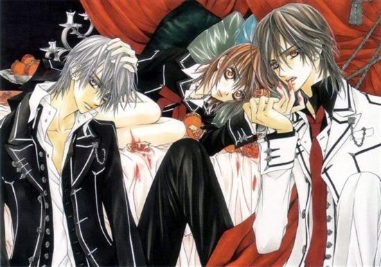 Vampire Knight Vampire Knight