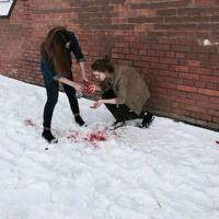 murdercows