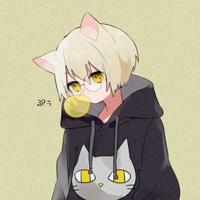 stupidcat