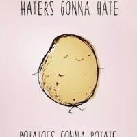 potato_sann